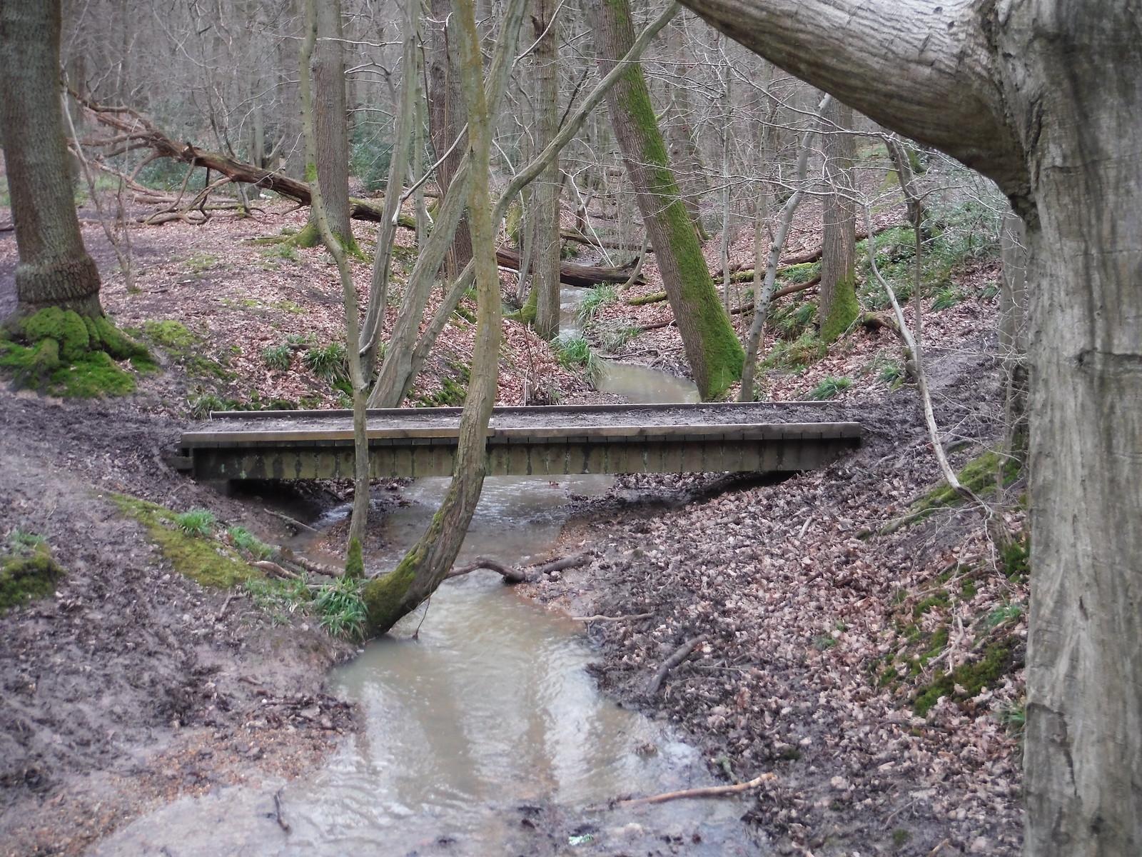 Wormleybury Brook, Wormley Wood SWC Walk 168 Broxbourne Circular