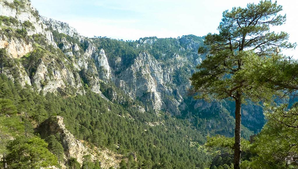 Vistas del Recó del Aguasmulas desde la zona de la Hoya de la Albardía