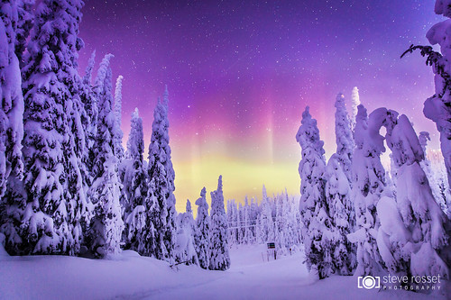 winter sky mountain snow canada ski cold night forest landscape lights frozen bc outdoor okanagan magic resort alpine northern vernon lightshow northernlights auroraborealis silverstar