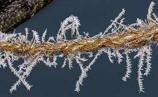 White Ice Deposition