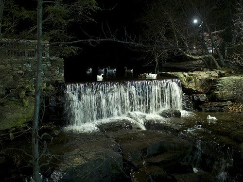 westminster birds night restaurant geese waterfall goose fowl theoldmill olympus17mm18