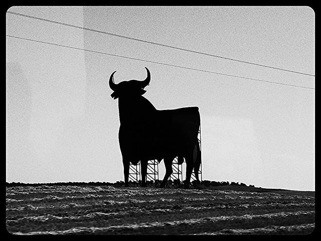 Bull..Bull..Bull..