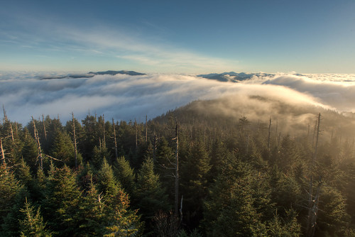 travel vacation nature clouds sunrise nationalpark nikon unitedstates cloudy outdoor hiking northcarolina d750 hdr clingmansdome greatsmokymountains abovetheclouds brysoncity 2470mm photomatix cloudinversion