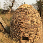 Ethiopia chicken coop constructed with woven reeds (submitted by Abby Morris)