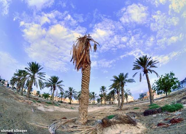 End of Raya Garden .. Bahrain