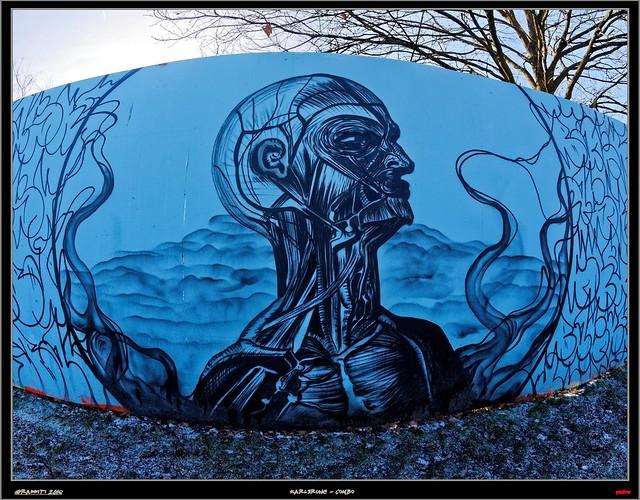 Artist: Baske   -    Title:  Anatomy Neck