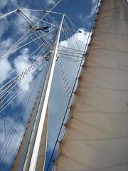 tall Ship Sails