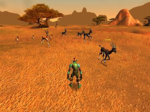 Herde Rehe im Brachland