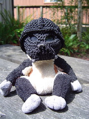 Darth Monkey