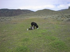 takining a hiking break mara mountain