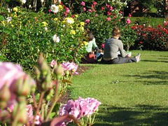 Students at the Lady Norwood Rose Garden