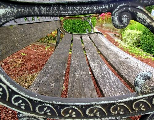 stilllife oregon olympus framing decay garden bench wood wow favorite seating geotagged geolat45414381 geolon122803605 topv111 1025fav c8080 mostinteresting interestingness