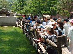 06-26--zoo-visit-- 055