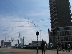 rotterdam crossing
