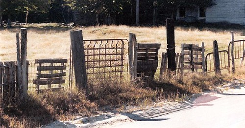 fence bed springs | by CraftyBunny