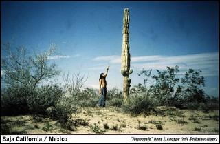 Mexico: selfportrait in Baja California near the Sea of Cortez on the gulf side...