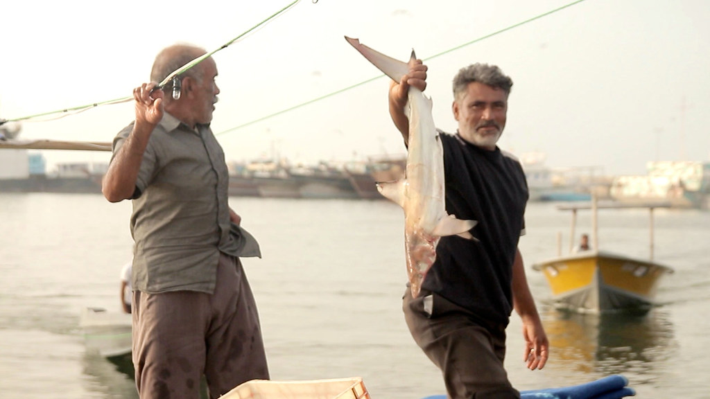 Boat Ramp • Fishermen Launching Freestyle • Bandar Abbas • IRAN-9