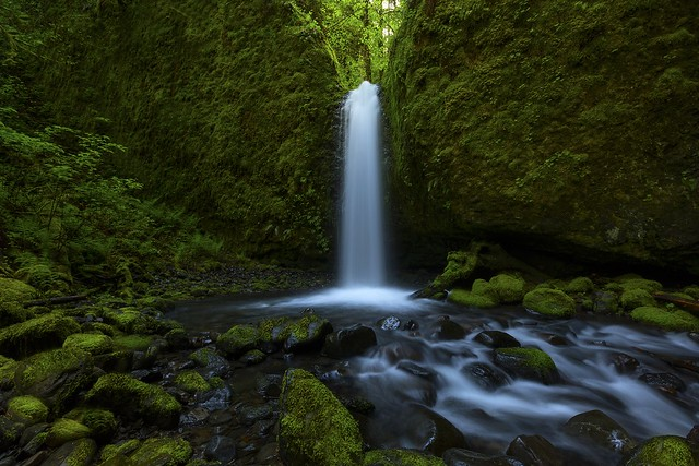 Mossy Grotto Fall (Columbia Gorge, OR)
