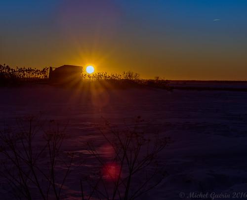 sunset © sun canada nature soleil exterior québec extérieur qc coucherdesoleil mirabel winteractivity activitédhiver michelguérin tamron150600mm tousdroitsréservésallrightsreserved nikond750 lightoomcc rangsaintmarie