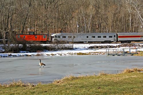 caboose ponds canadagoose frozenpond passengertrains passengercars cuyahogavalleyscenicrailroad cvsr saintluciesound cvsrtrains