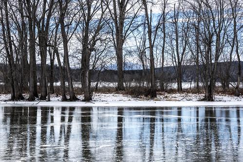 trees reflection landscape frozen lakechamplain ferrisburgh