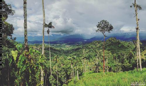 landscape ecuador edge amazonas