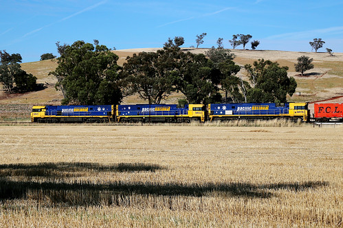 trains nsw newsouthwales freight pacificnational jindalee nrclass