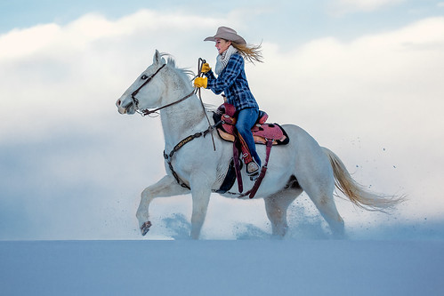 ranch county winter woman usa white snow cold west girl beautiful beauty field animal horizontal clouds rural hair person countryside cool montana bozeman ride unitedstates adult cloudy snowy horizon longhair fast riding teen blonde attractive western flannel denim copyspace cowgirl care middle sideview cowboyhat rider graceful equestrian horseback centered hilltop stallion saddle equine tack gallop ranching quarterhorse 20s caucasian westernwear galloping trotting reins kickingup