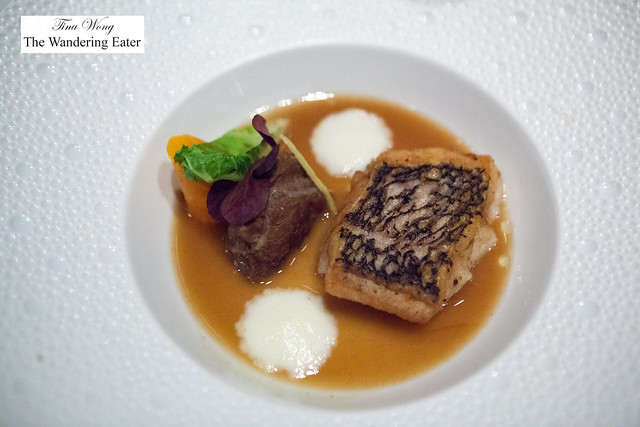 """Black Bass """"Surf & Turf"""" - Crispy Black Bass and Braised Veal Cheek; Parsnip Emulsion, Ginger-Five Spice Reduction"""