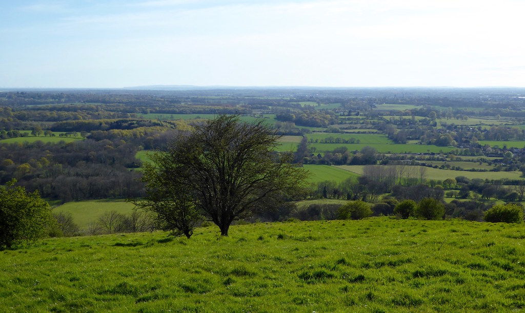 View near Wye Sandling to Wye walk