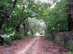 Home Island Road