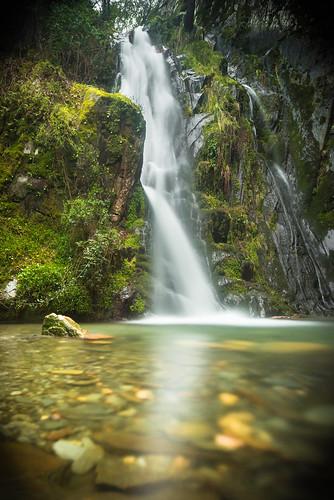 green fall portugal water forest river waterfall da vegetation pena serra heavy meters height twenty fraga microlandscape cascata arganil açor benfeita pardieiros
