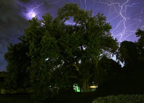 longexposure trees storm weather night clouds landscape cloudy nightshots thunderstorm nightsky nightscene lightning extremeweather sebastianfl stormscape lightningstorm indianrivercounty 8801071113303420160416052052c kmprestonphotographyc