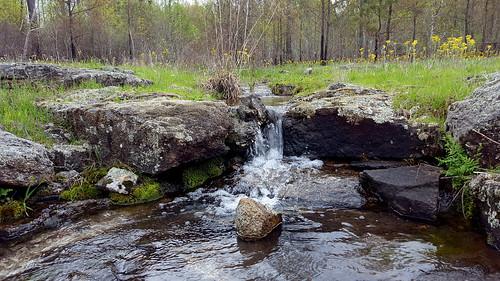 water glade thenatureconservancy nephelinesyenite