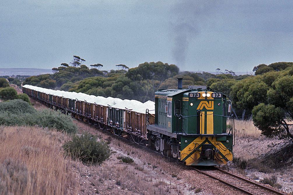 Narrow gauge DL531 by Bingley Hall