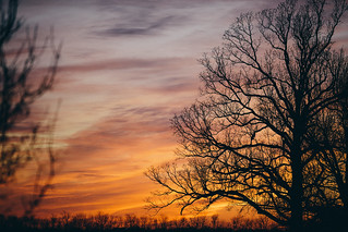 January Kentucky Sunset | by slowcivicseth