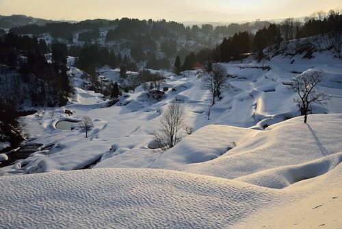 snow japan 日本 niigata ricefields tokamachi 雪 terraced 新潟 日の出 十日町 kamou 棚田 echigotsumari 蒲生 越後妻有