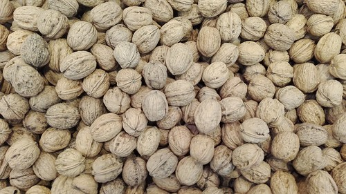 nueces | by Herbolario Allium: www.alliumherbal.com