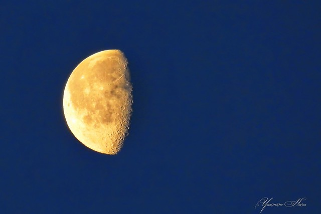 this morning-Moon (29 february)