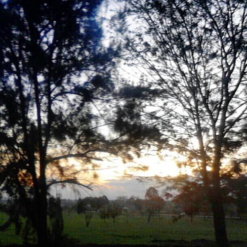 sunset uploaded:by=flickstagram kenya365 thikatweeps instagram:photo=345564943326439716227669921 instagram:venuename=thikaflyover instagram:venue=51523998 thikaflyover kenya365filtered