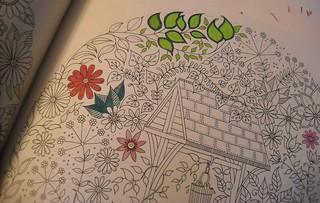 coloringcu