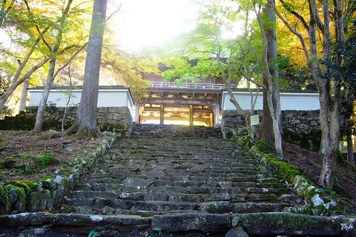 japan kansai hyogo 兵庫県 tamba kogenji 丹波市 高源寺