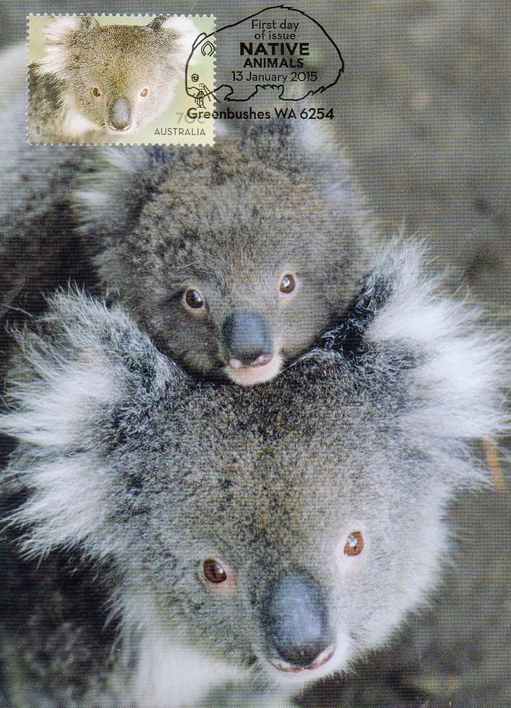 AU-485102pp Koalas, Australia  | Postcrossing Postcard ID: A