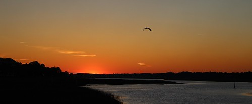southcarolina disneyshiltonheadresort hiltonhead hiltonheadisland hiltonheadsouthcarolina sky sunset sunlight scenic bird water chadsparkesphotography canoneosrebelt5 clouds