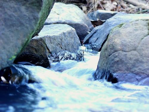 Stream in Sparkman Park   by ALalto