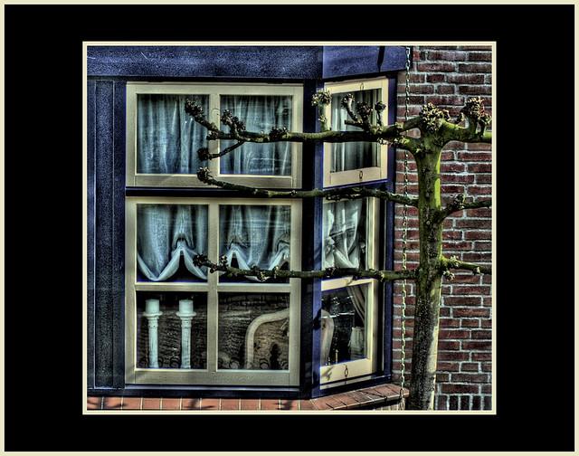 Window peeking...