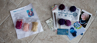 Yarn Subscription preview, January 2016 (Yarn of the Month and Jimmy Beans Beanie Bags)   by Terriko