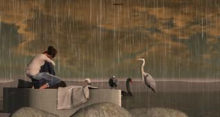 Birds, friends and rain at Furillen   by Pepa Cometa