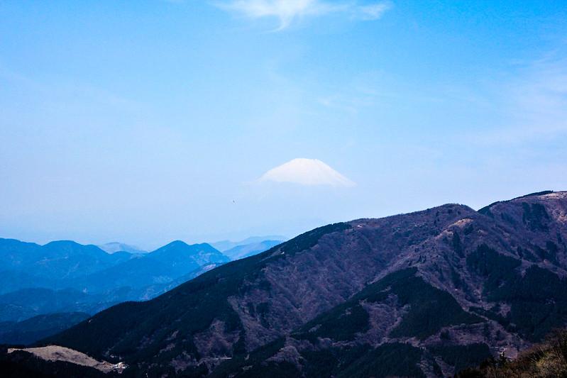 20110417-大山-0071.jpg