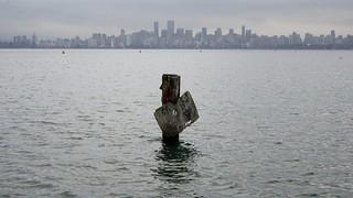 King tide + sea level rise = swelling seas